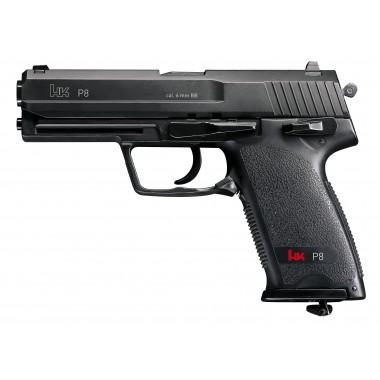 P8 HK